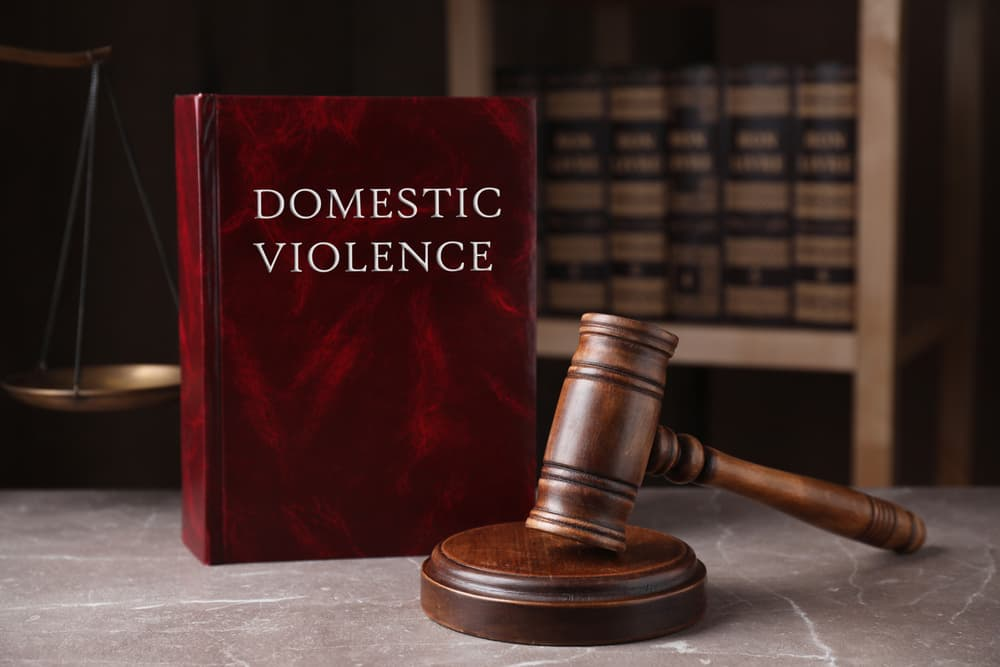 What is a domestic violence application hearing